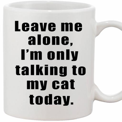 Personalised 'Leave Me Alone, I'm Only Talking to My Cat Today' Mug.jpg