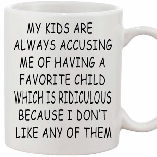 Personalised 'My Kids are Always Accusing Me...Favourite Child' Mug.jpg