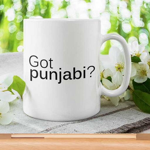 Got-punjkabi-Personalised-Desi-Infusion-Style-Mug.jpg